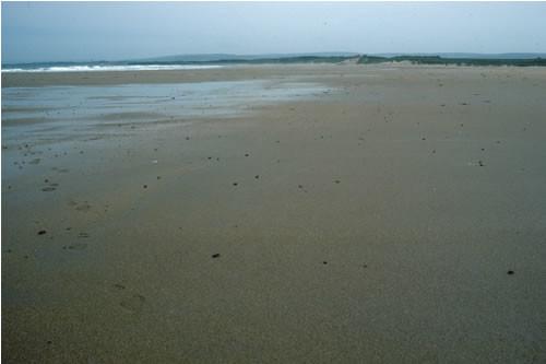 LS.LSA.MOSA.BarSa Barren littoral coarse sand, W Peffer Sands, North Berwick. Rohan Holt © JNCC