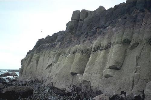 LR.HLR.MUSB.Cht Chthamalus spp. on exposed eulittoral rock, Broadhaven, Dunbar. Jon Davies © JNCC